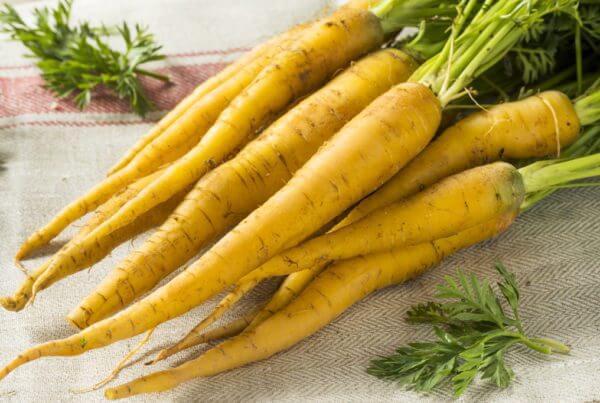 Yellowbunch Carrot