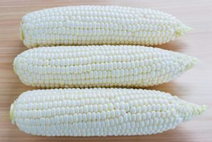 Argent Sweet Corn