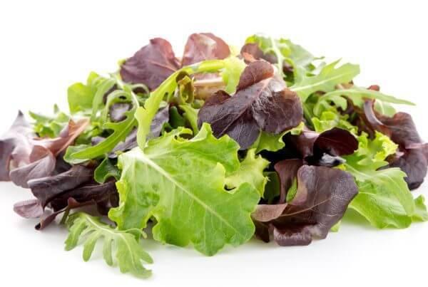 Baby Leaf Lettuce Mix