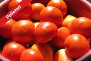Bella Rosa Tomato