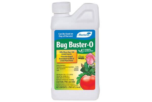 Bug Buster O