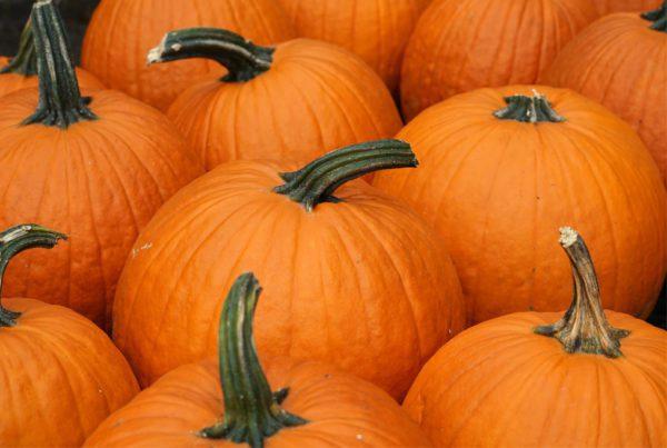 Diablo Pumpkin
