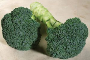 Emerald Crown Broccoli