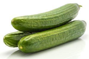 Green Dragon Burpless Cucumber