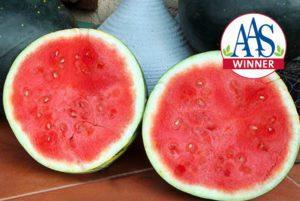 Harvest Moon Seedless Watermelon