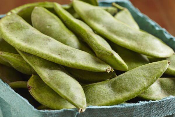 Henderson Bush Lima Bean