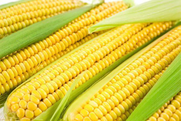Jubilee Sweet Corn