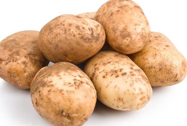 Kennebec White Potato
