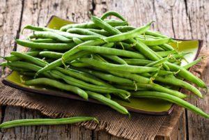 Landreth Stringless Bean