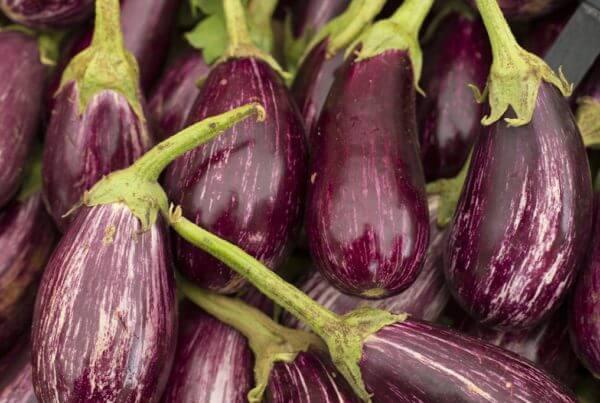 Nubia Eggplant