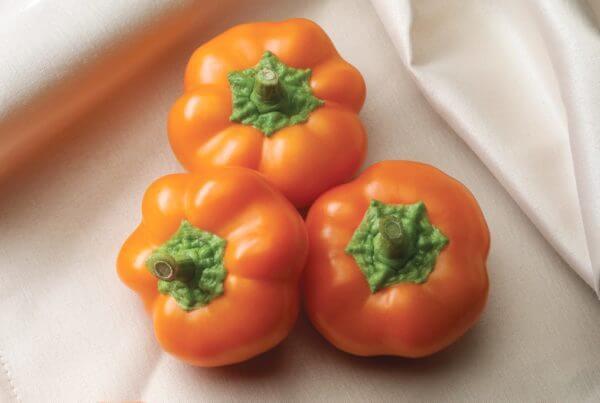 Orange You Sweet Pepper