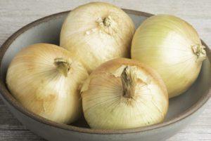 Plethora Onion