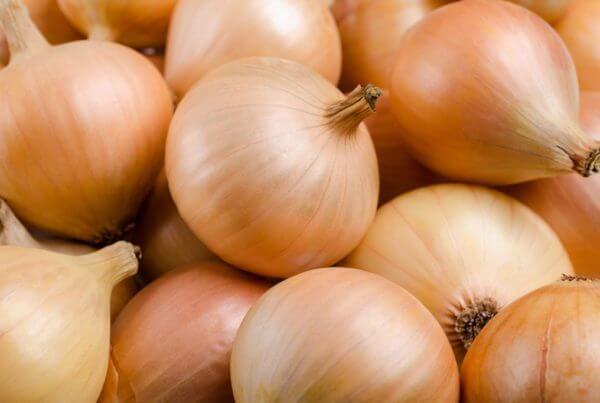Savannah Sweet Onion