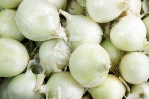 Sierra Blanca Onion