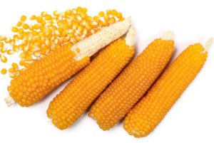 South American Popcorn