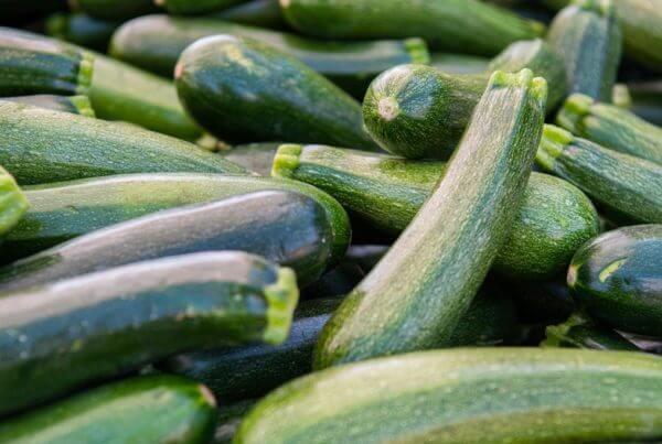 Spineless Beauty Zucchini