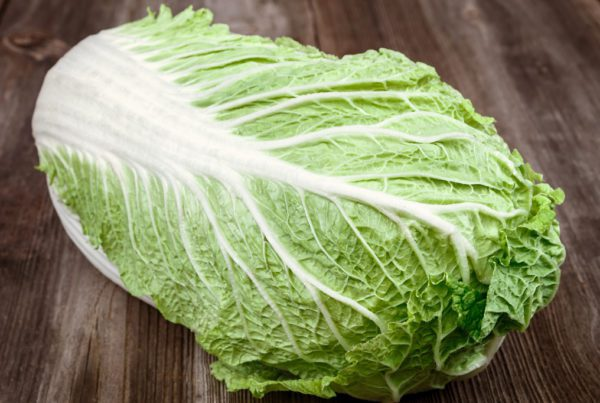 Spring Crisp Chinese Cabbage