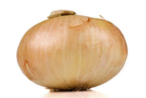 Sweet Agent Onion