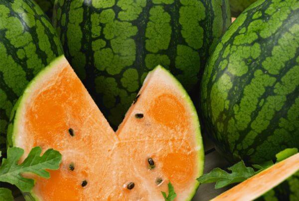 Tendersweet Orange Watermelon