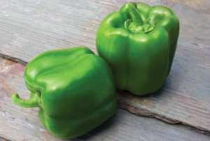 Touchdown Bell Pepper