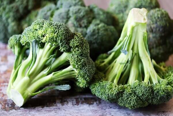 Waltham 29 Broccoli