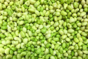 White Acre Pea