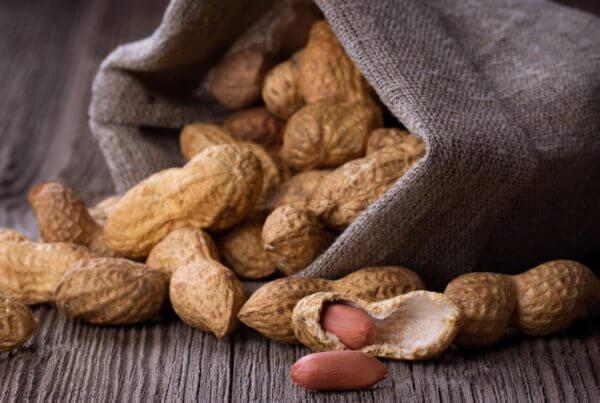 Wynne Peanut