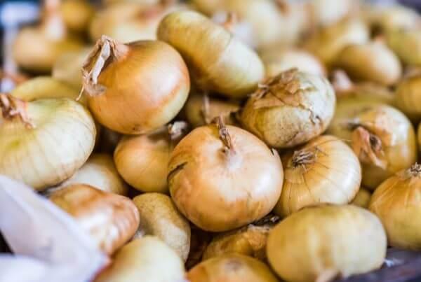 Yellow Cipollini Onion