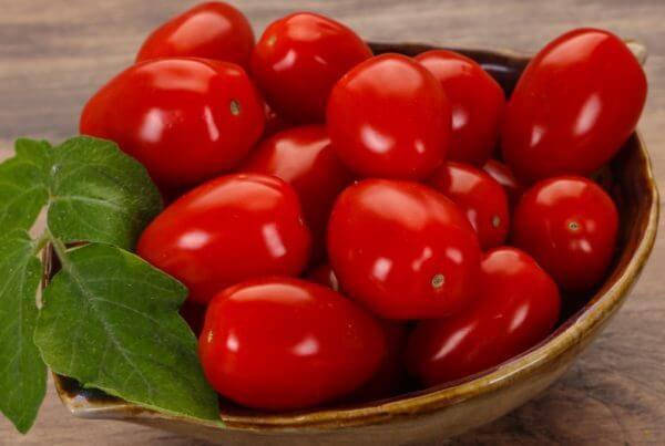 Mountain Vineyard Tomato