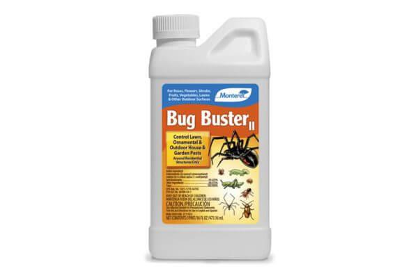 Bug Buster II