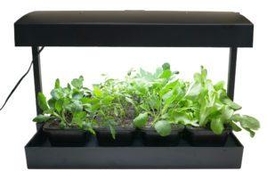 Indoor Seed Starting Light Kit