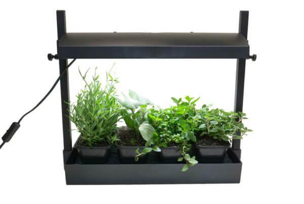 Kitchen Garden Light Kit