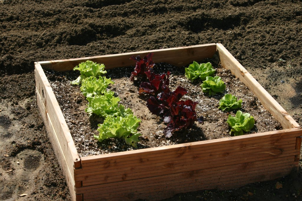 32 Inch Raised Bed Garden Kit