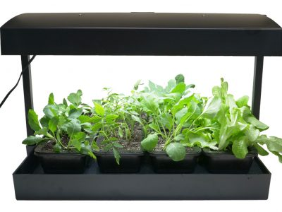 Indoor Seed Starting Light Kit